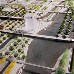 Research on Urban Agriculture in The Netherlands: Park Supermarket